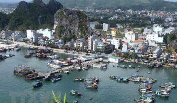 Đảo Cái Bầu là đảo trung tâm, giàu nguồn tài nguyên của huyện Vân Đồn, Quảng Ninh, nơi dự kiến sẽ phát triển đặc khu Vân Đồn.