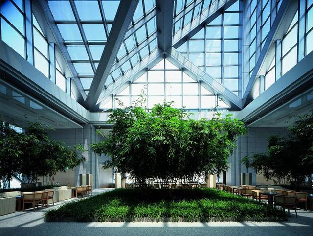 Khu vườn tầng thượng của khách sạn Park Hyatt Tokyo, bối cảnh bộ phim Lost in Translation