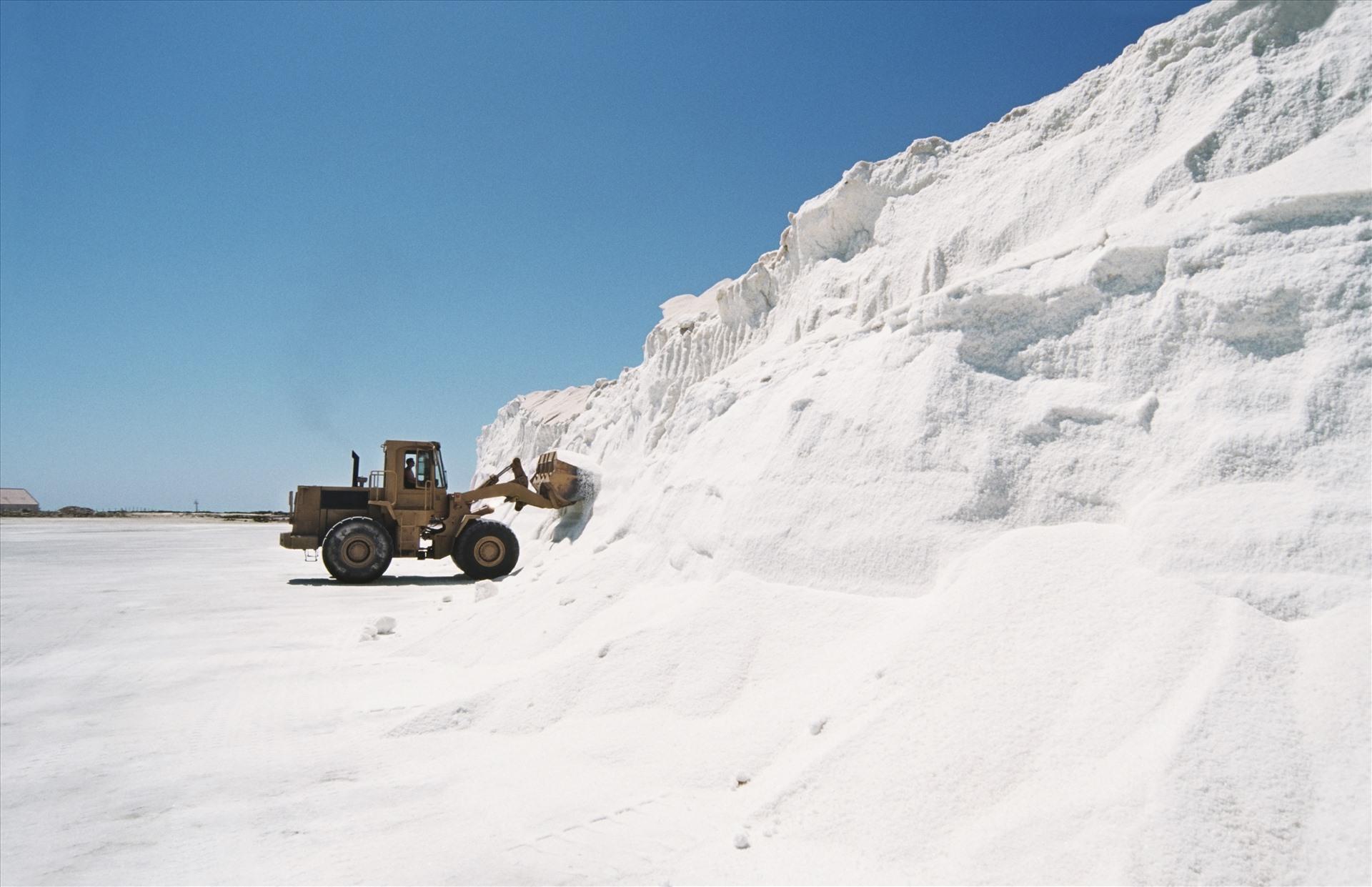 Đồng muối sạch tại Ninh Thuận – một trong ba đồng muối chất lượng cao, lớn nhất Đông Nam Á.